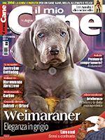 Il Mio Cane n.245