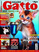 Gatto Magazine n.100