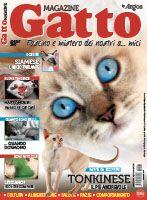 Gatto magazine 2017 + DIGITALE OMAGGIO