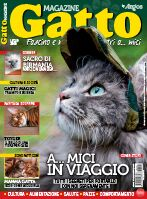 Gatto Magazine Digital