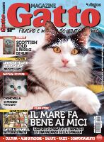 Gatto Magazine digital PET 360 3 mesi