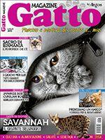 Gatto Magazine n.97