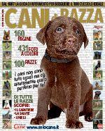 Il Mio Cane Speciale  n.26