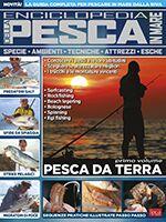 Pesci & Pesca Mare n.14