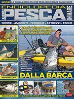 Pesci & Pesca Mare n.15