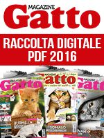 Gatto Magazine Raccolta Pdf (digitale) n.1