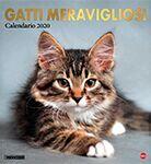 Copertina Gatto Magazine Compiega/Gatti Meravigliosi n.2
