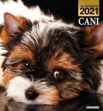 Copertina Argos Compiega/Cani Libreria n.9