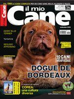 Copertina Il Mio Cane n.234