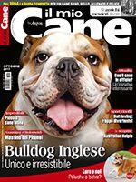 Il Mio Cane n.255