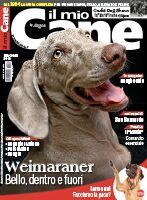Il Mio Cane n.261