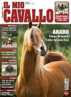 Copertina Il Mio Cavallo n.6