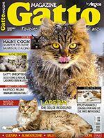 Gatto Magazine n.101