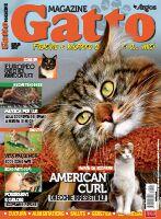 Gatto Magazine n.102
