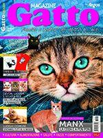 Gatto Magazine n.104