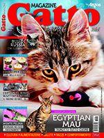 Gatto Magazine n.105