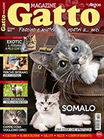 Gatto Magazine n.108