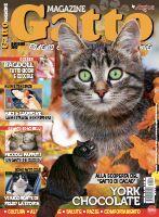 Copertina rivista Gatto Magazine
