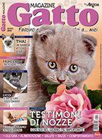 Gatto Magazine n.115