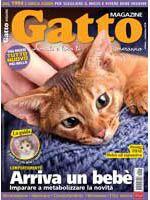 Copertina Gatto Magazine n.91