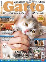 Gatto Magazine n.93