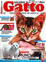Gatto Magazine n.94