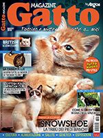 Gatto Magazine n.95