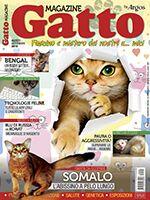 Gatto Magazine n.98