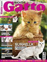 Gatto Magazine n.99