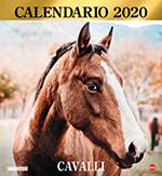Copertina Argos Compiega/Cavalli n.4