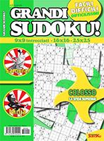 Copertina Grandi Sudoku n.42